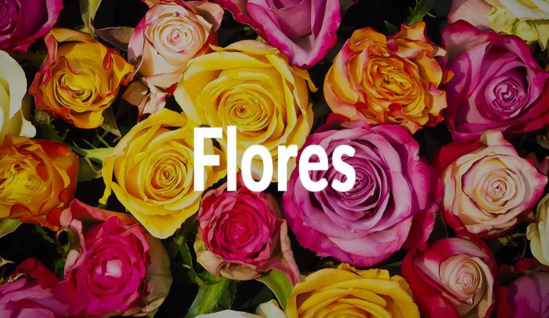 Flores en Floristería Yedra en Santander.