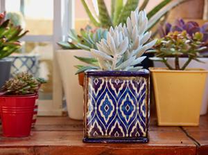Complementos de cerámica en Floristería Yedra en Santander