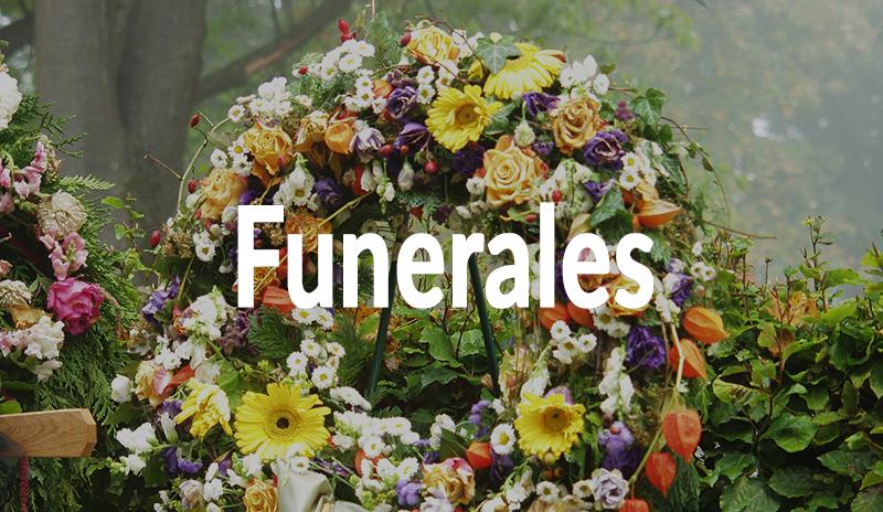 Funerales, coronas, centros, ramos, etc. en Floristería Yedra en Santander.